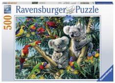Ravensburger Koalák a fán 500 darabos