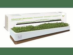 Urbanscape dekorativni komplet Mikro zelenjava, podstavek hrast