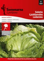 Semenarna Ljubljana solata Ljubljanska ledenka, 354, mala vrečka