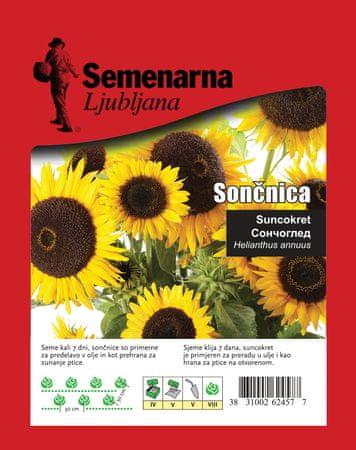 Semenarna Ljubljana suncokret, 50 g