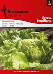 Semenarna Ljubljana solata Brasiliana, 356, mala vrečka
