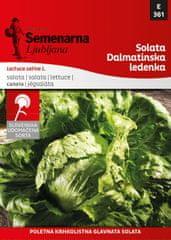 Semenarna Ljubljana solata Dalmatinska ledenka, 361, mala vrečka