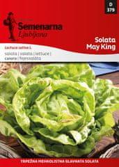 Semenarna Ljubljana solata May King, 379, mala vrečka