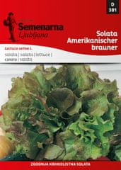 Semenarna Ljubljana solata Amerikanischer brauner 381, mala vrečka