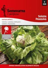 Semenarna Ljubljana solata Posavka, 398, mala vrečka
