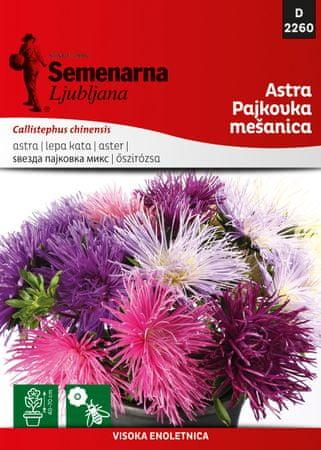 Semenarna Ljubljana astra pajkovka - mešanica D2260, mala vrečka