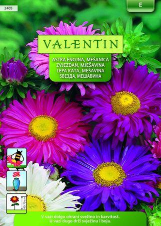 Valentin astra, enojna mešanica, 2405