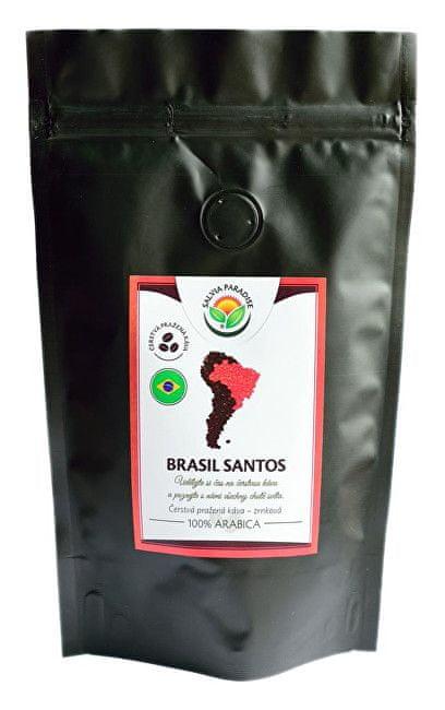 Salvia Paradise Káva - Brasil Santos (Varianta 100 g)