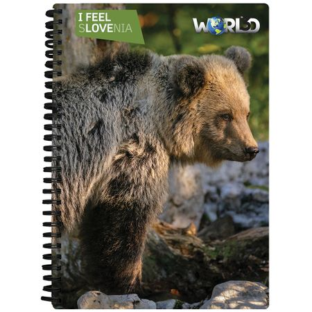 World 3D noteboook A5 80L – rjavi medved, spirala
