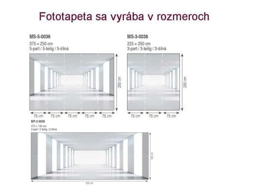 Dimex Fototapeta MS-3-0036 Biela chodba 225 x 250 cm