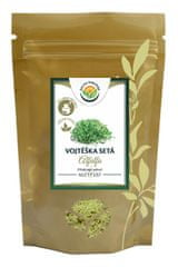 Salvia Paradise Alfalfa - Mladá zelená vojtěška