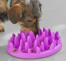 Interaktivna posoda za hranjenje My Pet Ez Slow