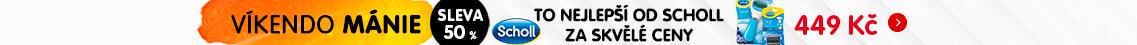 CZ 2019-03-WD-Scholl