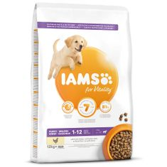 IAMS Dog Puppy Large Chicken 12 kg