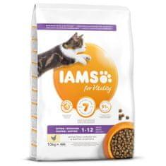 IAMS hrana za mačke Cat Kitten Chicken, 10 kg