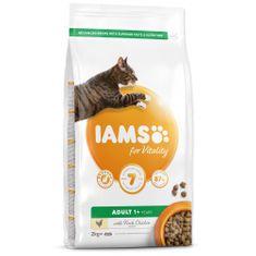 IAMS hrana za mačke Cat Adult Chicken, 2 kg