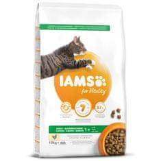 IAMS hrana za mačke Cat Adult Chicken, 10 kg