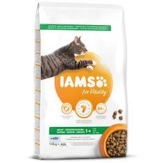 IAMS hrana za mačke Cat Adult Ocean Fish, 10 kg