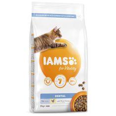 IAMS hrana za mačke Cat Adult Dntl Chicken, 2 kg
