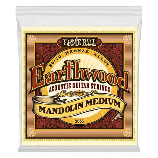 Ernie Ball 2065 Earthwood Mandolin Medium 80/20 Bronze Loop End Set, .010 - .036