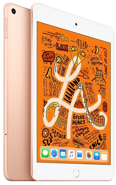 Apple iPad Mini Wi-Fi + Cellular, 256 GB, Gold