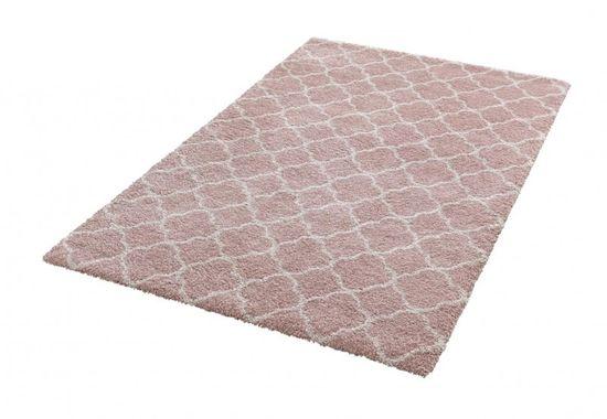 Mint Rugs AKCE: 80x150 cm Kusový koberec Grace 102602