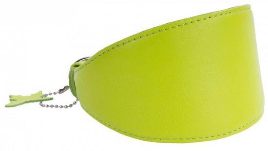 Wau Dog Obojok pre chrty kožený zelený