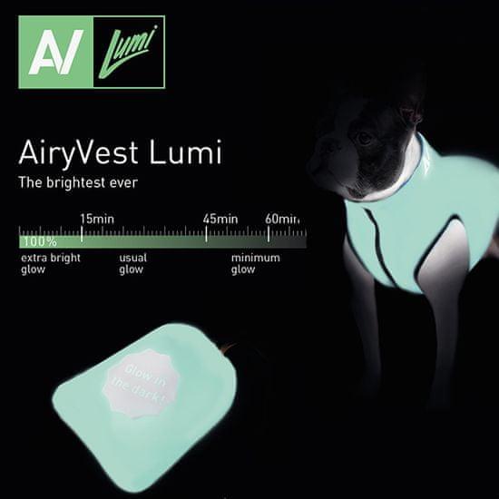 Airyvest Teplá vesta pro psa AiryVest LUMI svítící ve tmě modro zelená