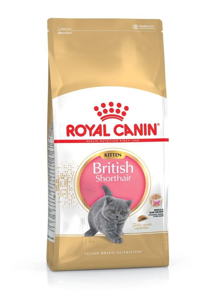 Royal Canin Kitten British Shorthair 10 kg