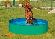 Karlie Összecsukható medence kutyáknak zöld-kék 120x30 cm