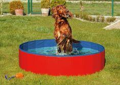 Karlie Összecsukható kutyamedence, kék-piros, 160x30 cm