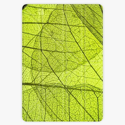 iSaprio Pouzdro Smart Cover - Leaves - iPad Air 2