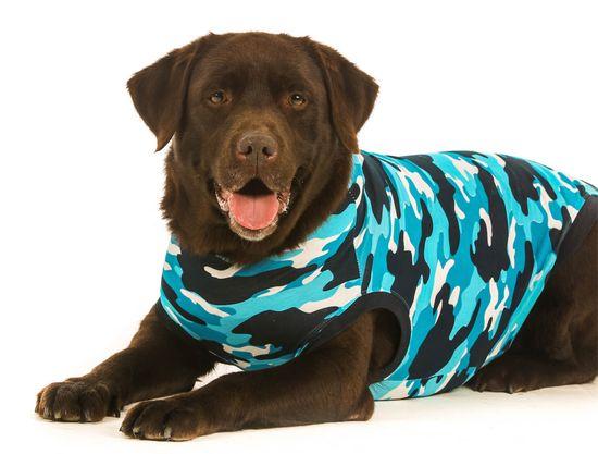 Suitical Pooperačné ochranné oblečenie pre psa modré