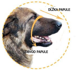 Dogextreme Kožený náhubek pro psa labrador