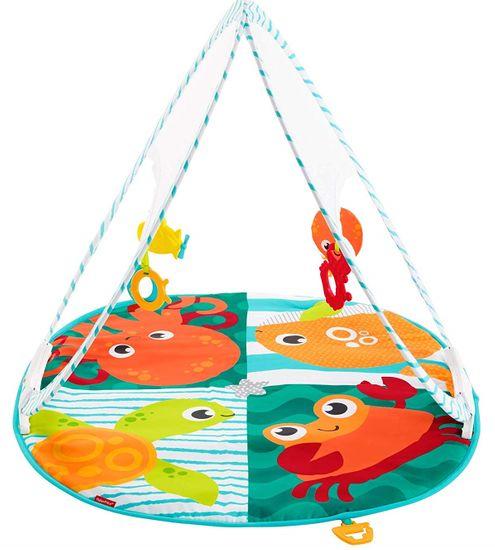 Fisher-Price igralna odeja v torbi