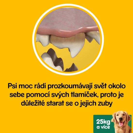 Pedigree Denta Stix large pack 28 ks