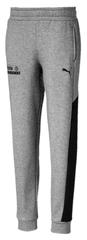 Puma chłopięce spodnie dresowe Alpha Sweat 104 szary