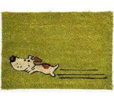 Rohožka Kokos Zelený pes 40x60