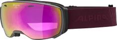 Alpina Sports Estetica HM grey-cassis