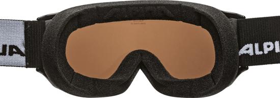Alpina Sports skijaške naočale Challenge 2.0 MM