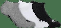 Champion športové nízke ponožky CH08QI NO SHOW SOCKS LEGACY 3 ks viacfarebná 35 - 38