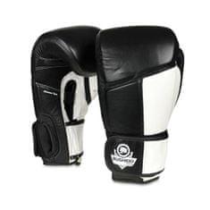 DBX BUSHIDO boxerské rukavice ARB-431 12 oz