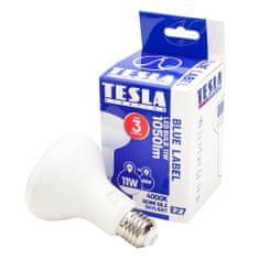 TESLA R8271140-7 LED žarnica