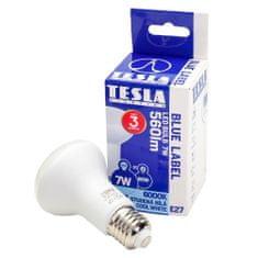 TESLA R6270760-7 LED žarnica