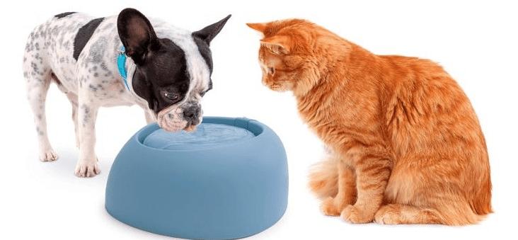 IMAC Fontána pro kočky a psy 2000 ml, modrá