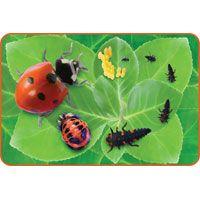 Insect Lore MEGA pěnové puzzle - Beruška