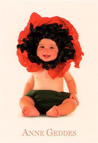 Anne Geddes Üdvözlőlap kis, Üdvözlőlap kis, ECI - poppy