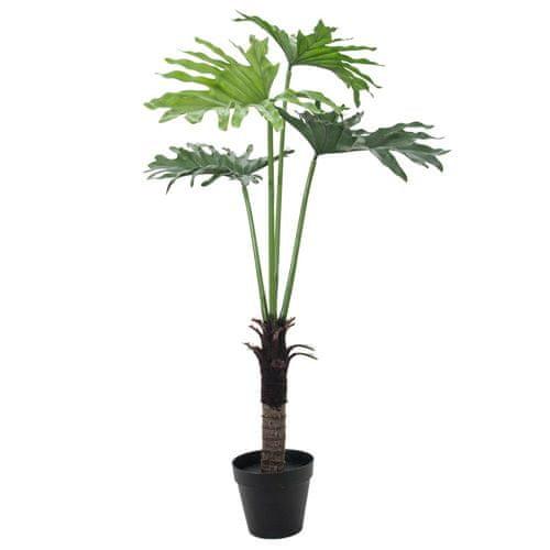 Europalms Rostlina Split Philo , Výška 120 cm