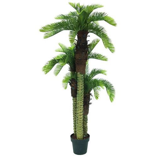 Europalms Palma trio , výška 150 cm