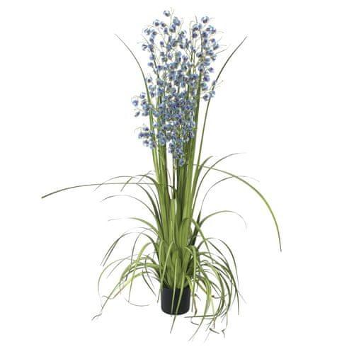 Europalms Orchidej travní , Výška 140 cm/modré květy